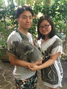 オーストラリアと言えばコアラです。