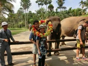 象と一緒にポーズ!